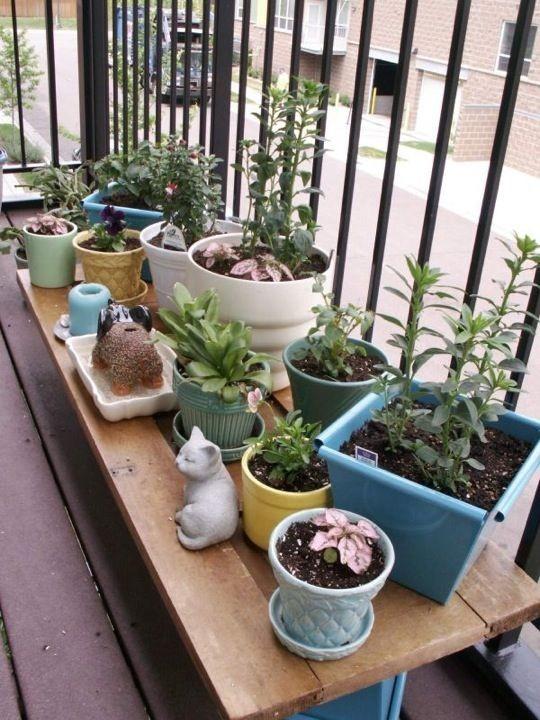 small apartment yard ideas