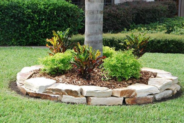 stone cover for landscape around tree