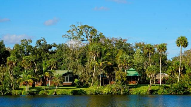 Florida landscaping 1