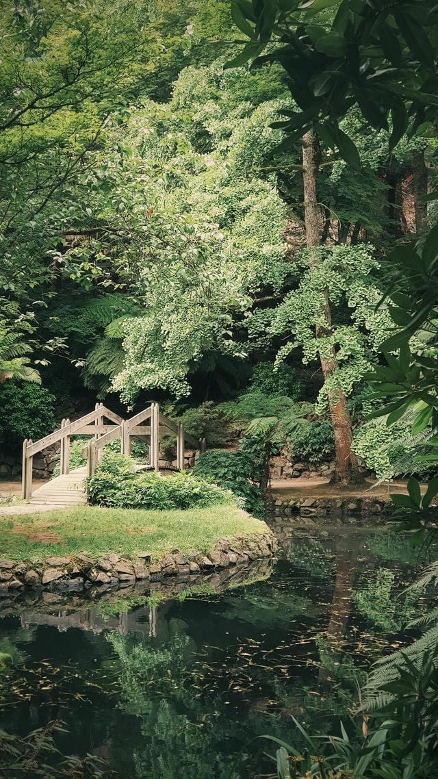 Japanese garden ideas beautiful scenery