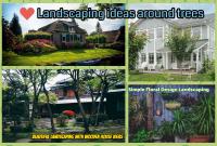 Best Landscaping ideas around trees