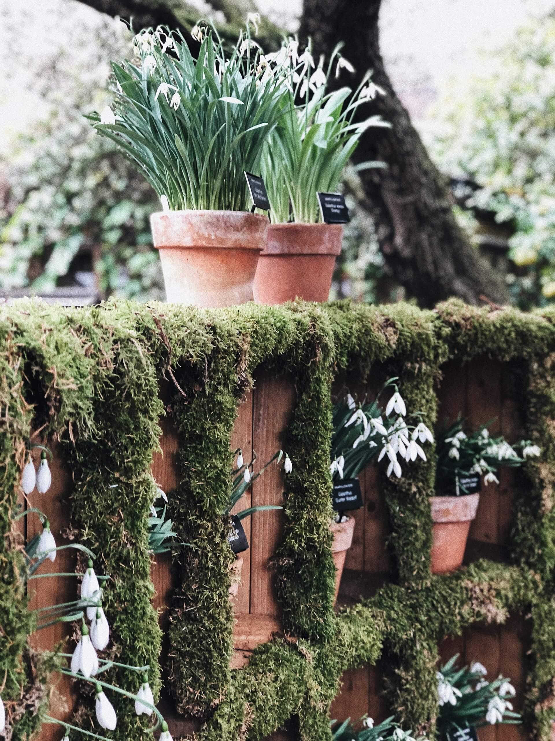 corner for garden bed