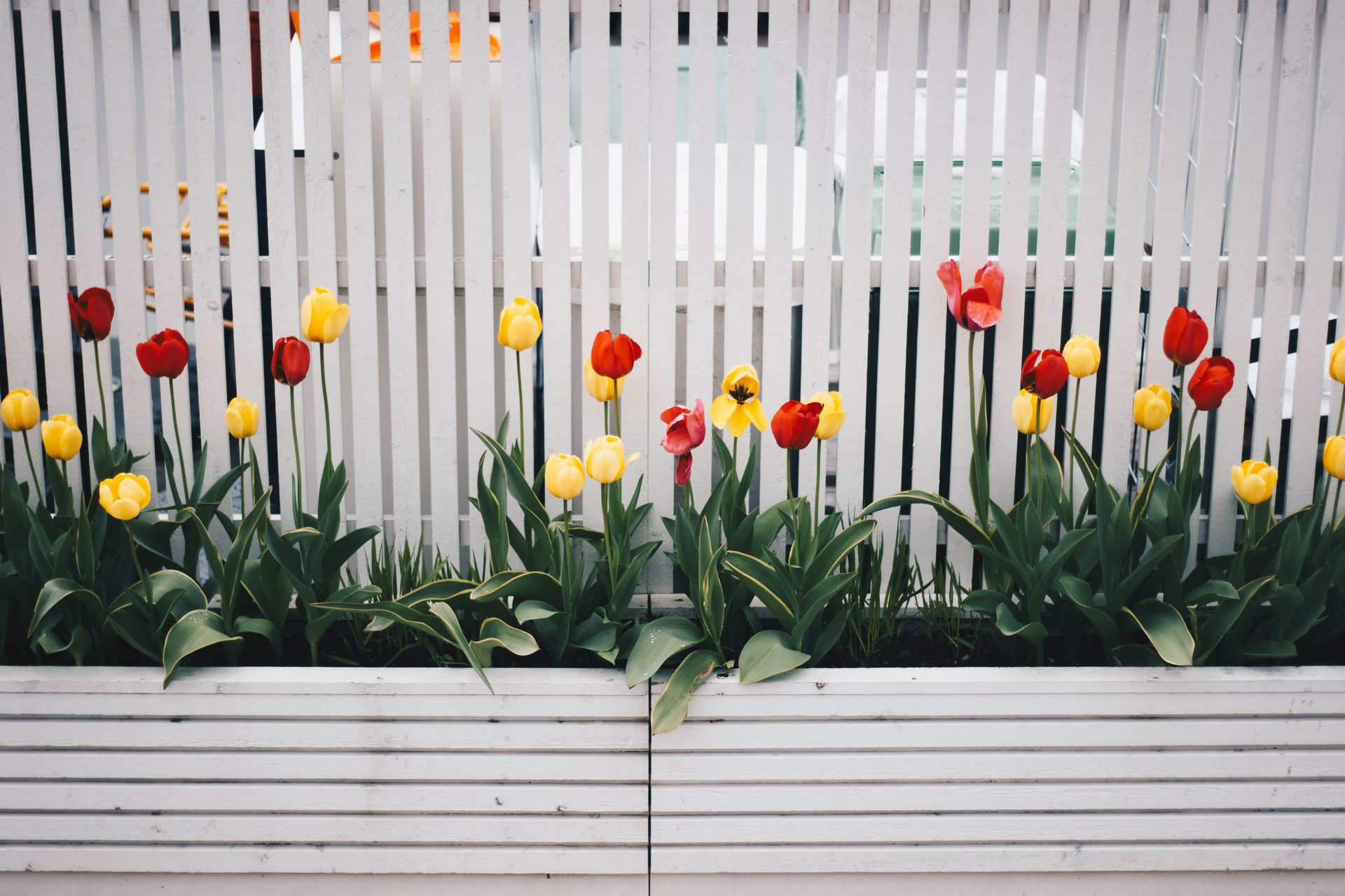 corner garden design