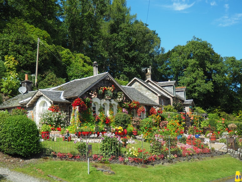 florida landscaping ideas