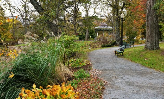 florida landscaping large garden ideas