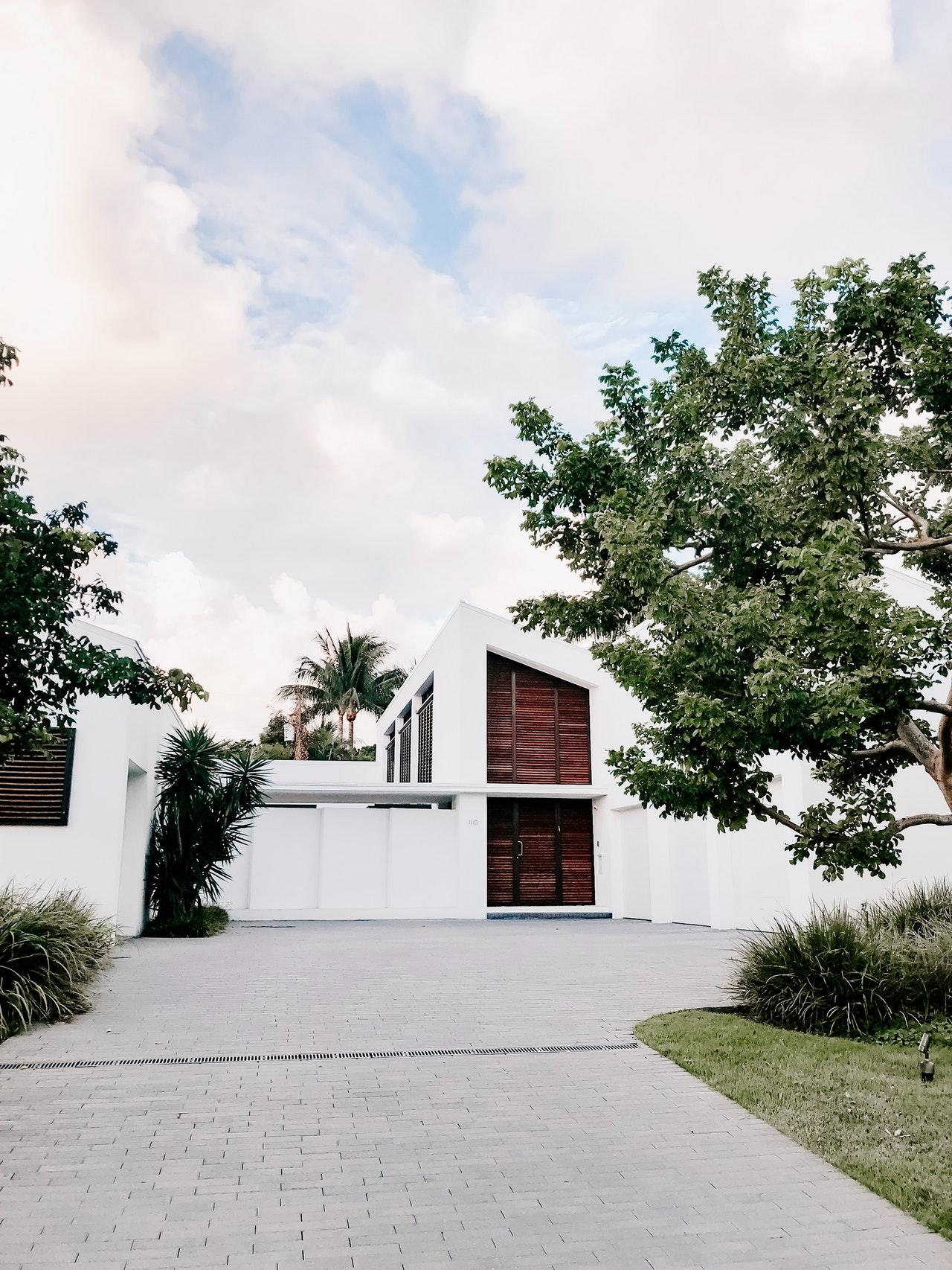 landscaping with trees ideas for front yard