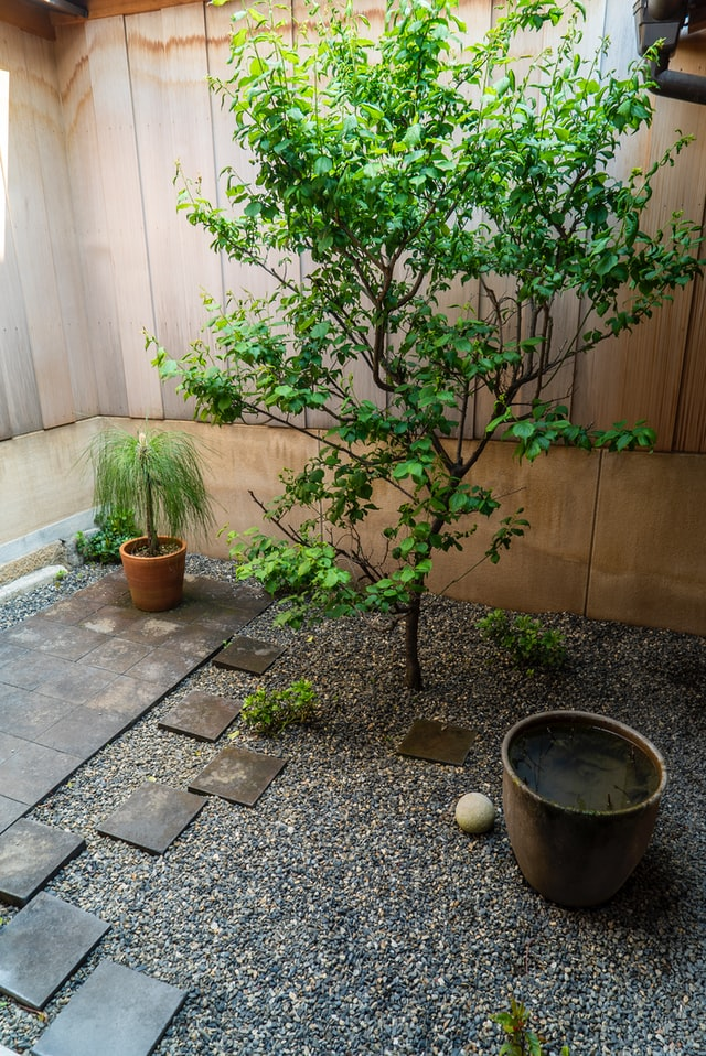 small garden with footpath