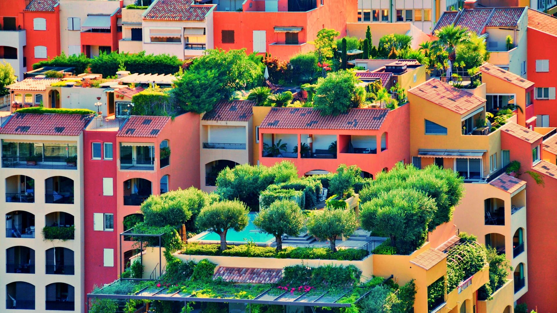 desain taman kecil dalam atap rumah