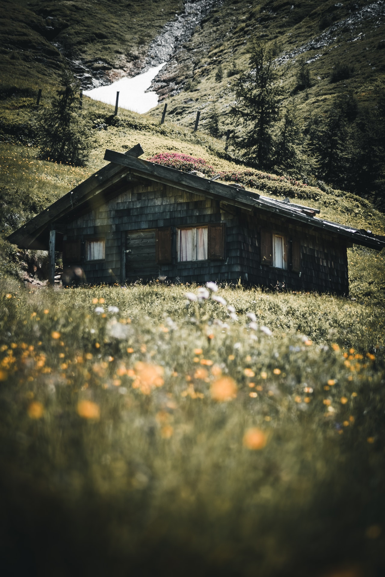 minimalist house plan 1