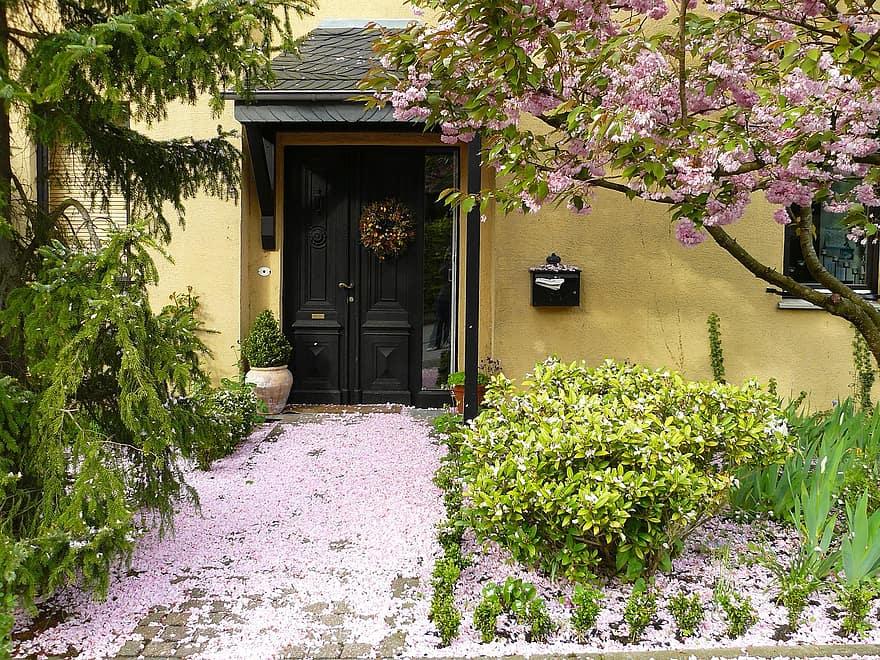 house entrance flowers blossom bloom petals flora light pink pink plant