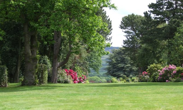 landscape tree grass structure plant lawn
