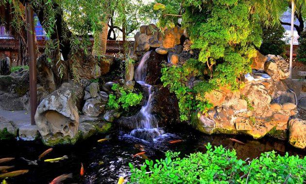 pond koi waterfall nature garden park fresh zen ornamental 1