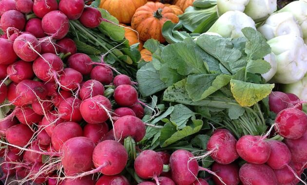 radishes radish pumpkin garlic vegetables healthy summer vegan fresh
