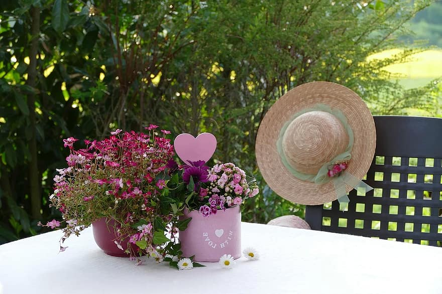 still life flower arrangement mother s day saxifrage kalanchoe heart spring potted flowers tender