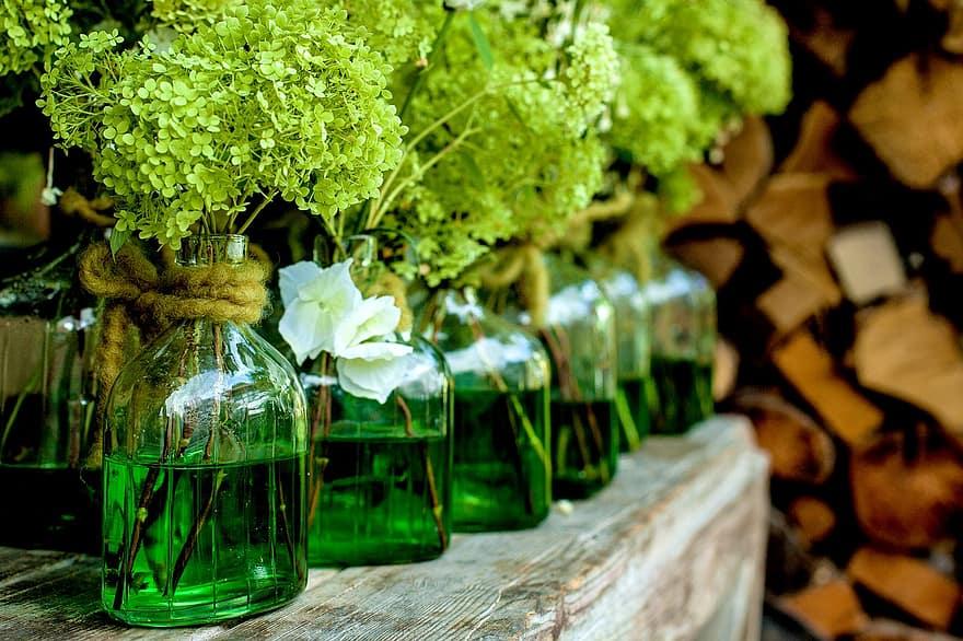 vases decoration plant flower still life flower vases flowerpot glass vase bottles