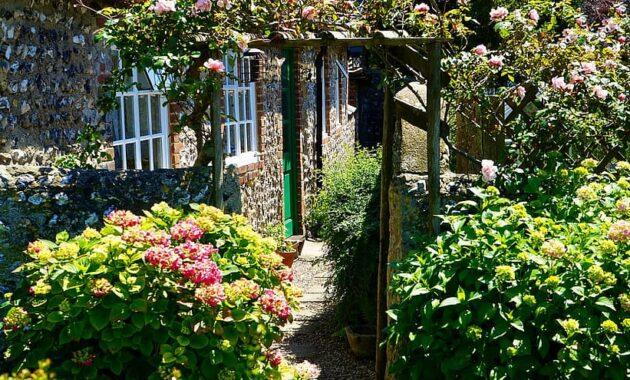 garden path green summer gardening flower outdoor stone pathway