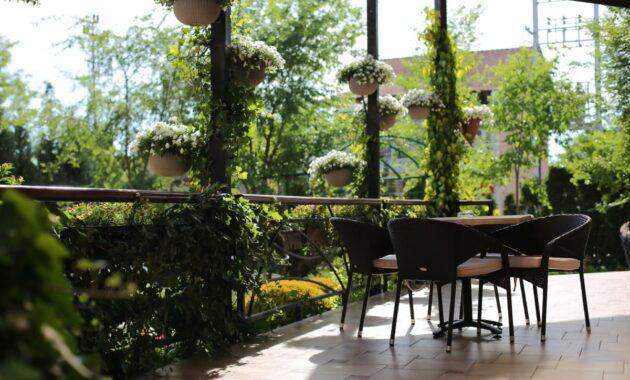 garden remodel 1