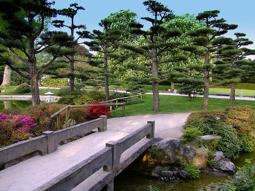 landscape japanese garden garden park bridge dusseldorf north park flowers summer