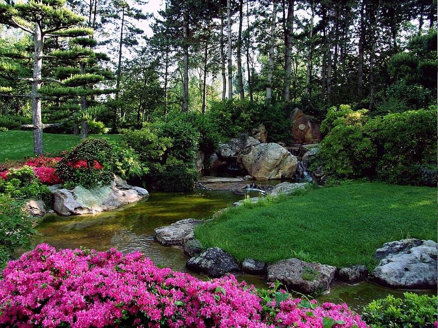 landscape japanese garden ornamental garden dusseldorf north park park flowers spring bach