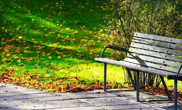 wood bench bench rest autumn green scenic greenery park good