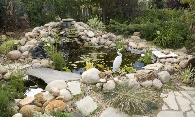 Fish Pond Inspiration for Backyard