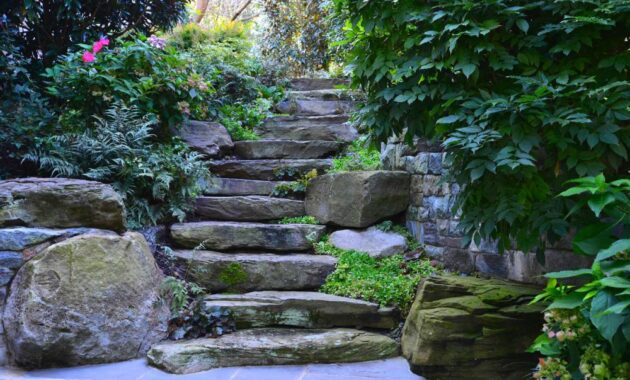 Landscaping Ideas involving stone steps