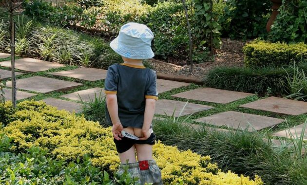 garden green shrubs foliage path paving figure of boy pulling up scants day time