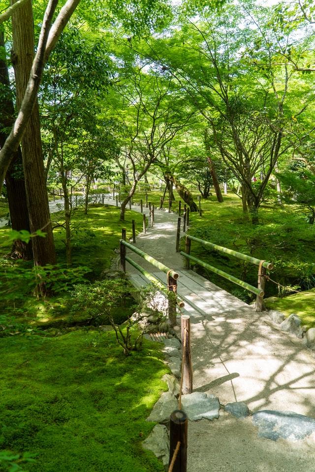 green garden and stone paving rock garden