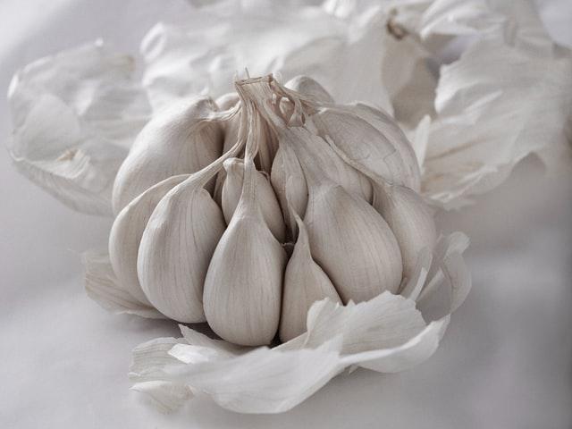 garlic how to make garlic spray