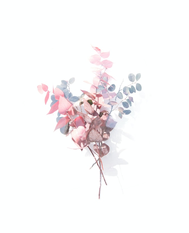 Flower art tissue and paper wall decor ideas
