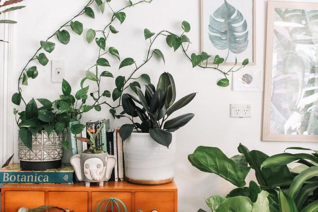 frame floral art room decor ideas