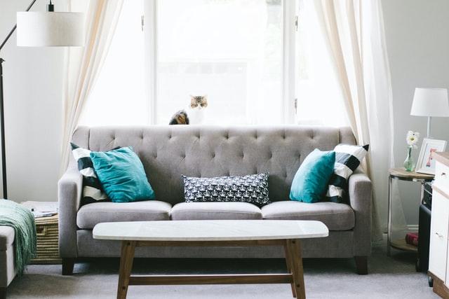 Elegant gray couch minimalist living room