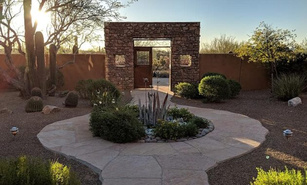 arizona cactus southwest usa landscape desert sunset saguaro backyard