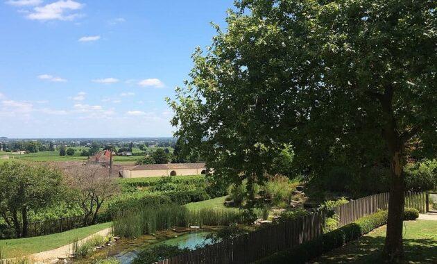 bordeaux landscape garden backyard