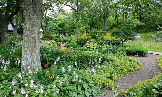 garden path flowers trees natural summer walkway gardening landscaping