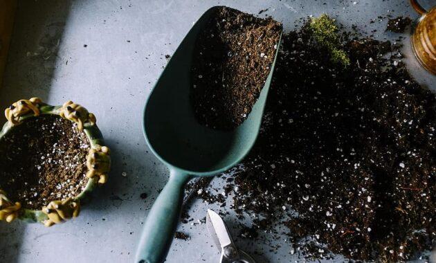 gardening pots soil scoop trowel dig grow plantation planting