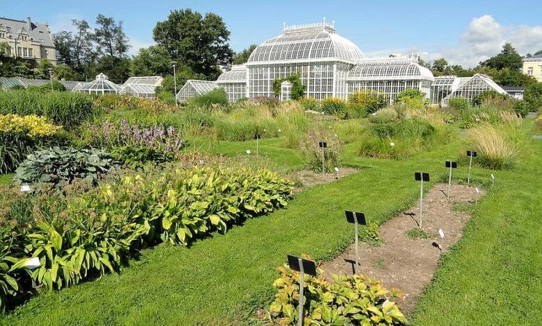 kaisaniemi finland botanical garden building sky clouds greenhouse glass