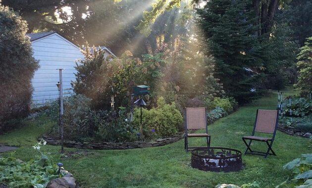 morning light garden sunlight landscape summer nature outdoor patio backyard