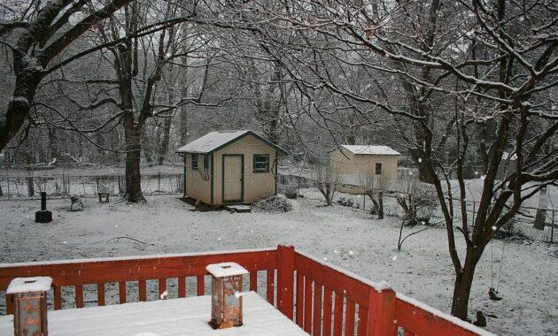 winter backyard snowfall quiet dreary